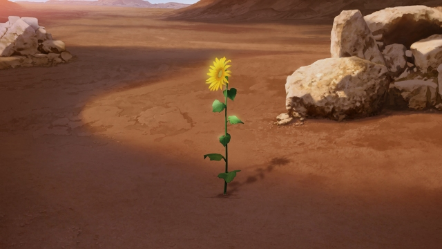 Flower in Desert