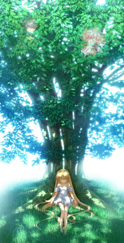 Shizuru Tree